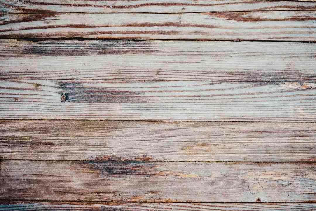 Quel est le meilleur bois pour un poêle de masse ?