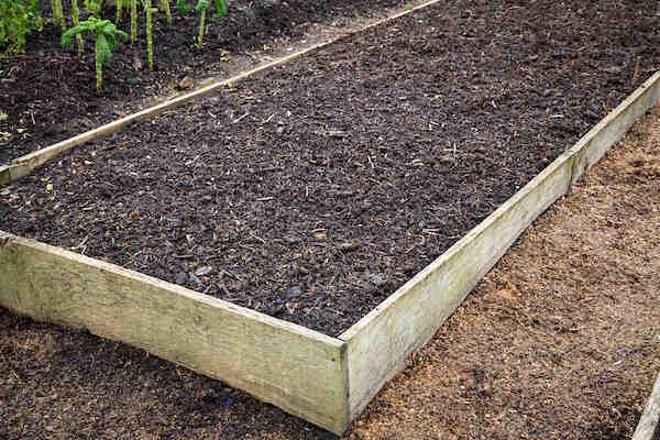 Quelles plantes dans une jardinière ?